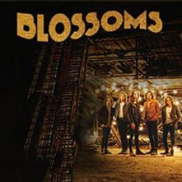 biglietti Blossoms