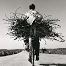biglietti Fulvio Roiter - Fotografie 1948-2007